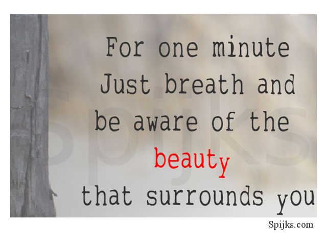 Spijks Quote Beauty